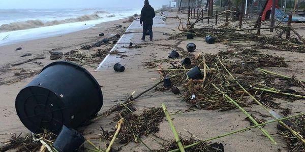 Jornada participativa de neteja de les platges de Pineda