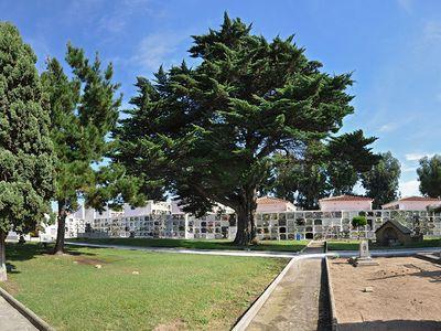 Mesures anti-Covid al cementiri municipal de Pineda de Mar per Tots Sants